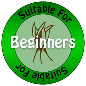 Suitable for Beginners Icon